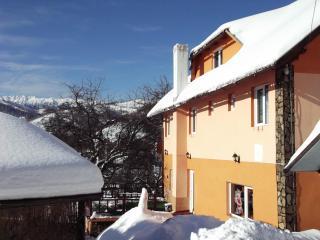 casa anamaria - Moieciu vacation rentals