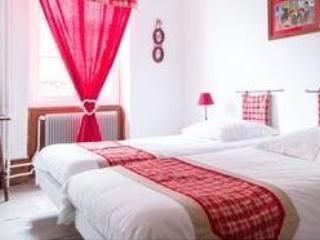 3 pièces calme plein centre historique de Colmar - Colmar vacation rentals