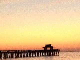 Naples Pier Only 8 Miles Away - Spectacular Immaculate Naples Bath & Tennis Condo - Naples - rentals