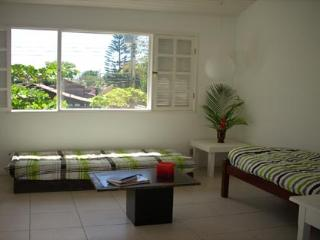 amazon house - Brazil vacation rentals