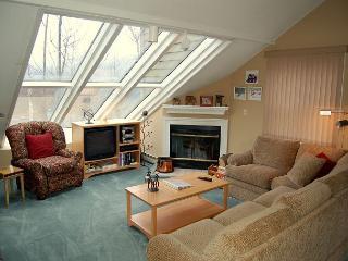 Winterplace 2 Bedroom Plus Loft - Ludlow vacation rentals