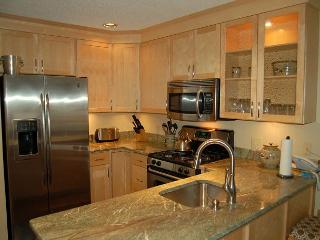 Winterplace 3 Bedroom Ski In/Out - Ludlow vacation rentals