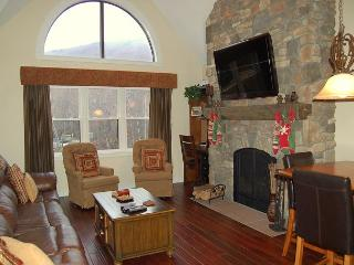 Winterplace 2 Bedroom Plus Loft Ski In/Out - Ludlow vacation rentals