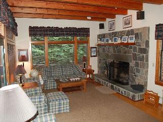 41 Snow Lane - Ludlow-Okemo Ski Area vacation rentals