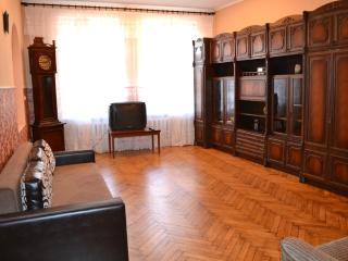 Big 3 bedroom apartment in the centre of Kharkov - Kharkiv vacation rentals