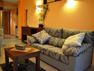 Cal Ribero Apartments 2PAX - Province of Lleida vacation rentals