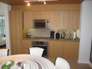 LUXURY DUPLEX DOWNTOWN TOWN HOUSE - Toronto vacation rentals