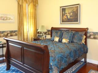 Large apartment on Granbury's Historic Square - Granbury vacation rentals