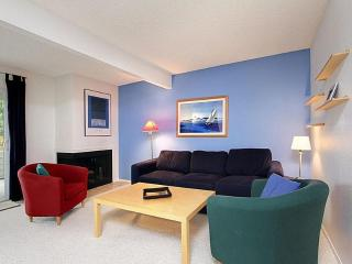 Comfortable & Contemporary Spacious Condo Home - Puget Sound vacation rentals