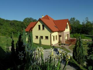 Villa Vinea- peacefull and relaxing vacation house - Velence vacation rentals