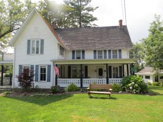 Large 5 BR Chautauqua Lake House - Chautauqua Allegheny vacation rentals