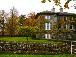 Durrow, Co. Laois, Coach house overlooking mill pond - Northern Ireland vacation rentals