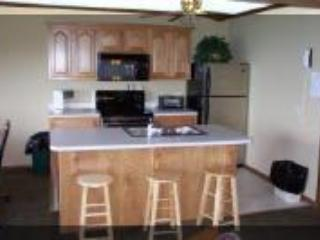 Snowshoe Summit 3 br. Condo 2 - Snowshoe vacation rentals