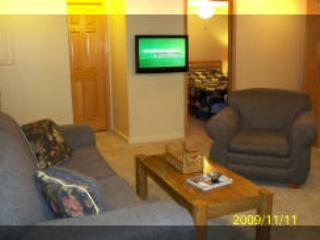 Snowshoe Mountain Lodge 3 bedroom, 3 bath Condo - Snowshoe vacation rentals
