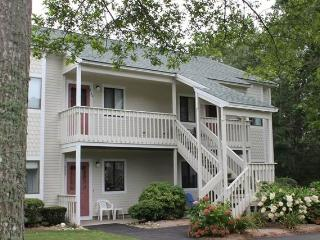 234 Eaton Lane - BPREI - Brewster vacation rentals