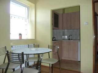 Apartment - Primorje-Gorski Kotar vacation rentals