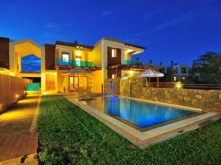 Horizon Line Villas - Luxury Villa - Private Pool - Kiotari vacation rentals