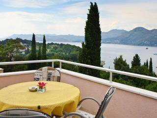 Holiday flat for up  to 5 with sea view in Cavtat - Dubrovnik vacation rentals