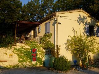 Amazing house outside Montaigu De Quercy - France - Lot-et-Garonne vacation rentals