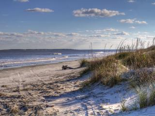 2015 BEST KEPT SECRET.. BON VOYAGE!!!!! - Georgia Coast vacation rentals
