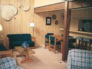 Living Room - Bryce Resort (VA) 2 hrs from DC - News Years week - Basye - rentals