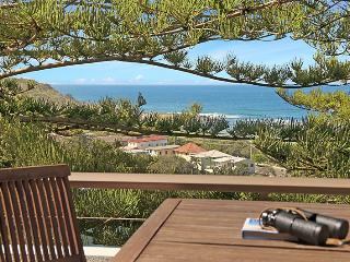 Penthouse Pacific Towers - great views & location - Federal vacation rentals