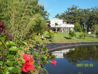 Secluded get away up- country Big Island of Hawaii - Honokaa vacation rentals