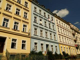 Apartment Richard - here you are at home - Karlovy Vary vacation rentals