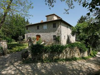 Large apartment in the countryside  with pool - San Casciano vacation rentals