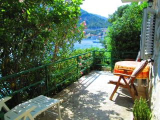 Mljet island Pinia amazing view apartments - Sobra vacation rentals