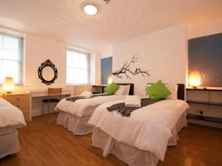 British Museum 2 bedroom/2 bathroom Apartment - London vacation rentals