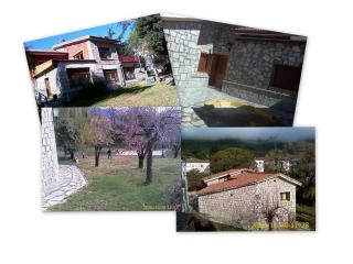 casa rural en alquiler o venta - Province of Avila vacation rentals