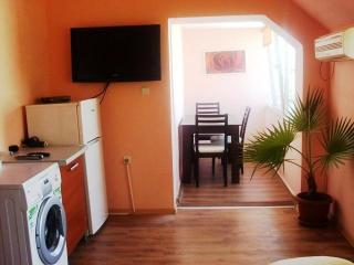 Luxury 2 rooms apartment to let in Bulgaria centre - Plovdiv vacation rentals