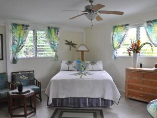 SUITE ALOHA – Remodeled, Romantic Island Retreat - Kailua vacation rentals