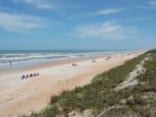 Mako Beach Dolphin House - with garage & pool - Ormond Beach vacation rentals