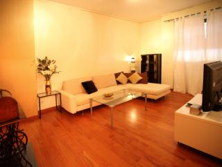 wonderful  big flat milano central&fiera freewifi - Milan vacation rentals