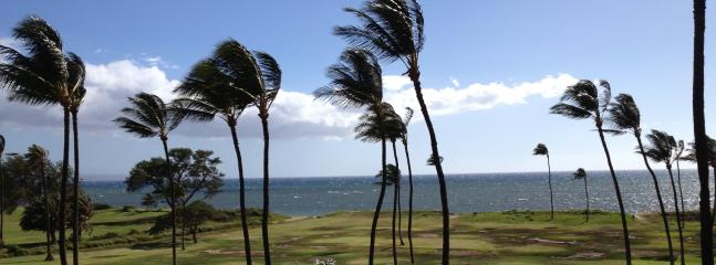 Stunning Ocean View 2/2 Affordable! - Image 1 - Kihei - rentals