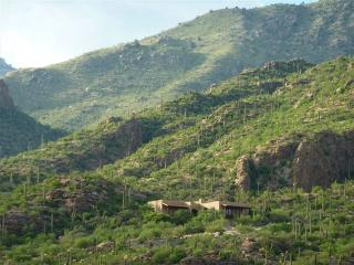 Mountain Estate Ventana Canyon-Free Use Membership - Tucson vacation rentals