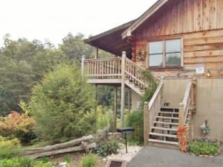 HONEY TREE - Pigeon Forge vacation rentals