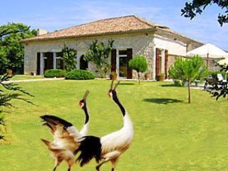 Historic Villa 4 bedrooms with pool SW  France - Montaigu-de-Quercy vacation rentals