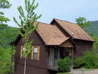 The Aster Cabin at Laurel Mountain Cabins - Hiawassee vacation rentals