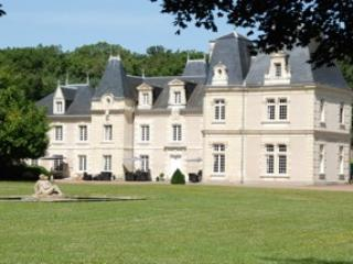 The Château de Jalnay, a very romantic and nice pl - Glenouze vacation rentals