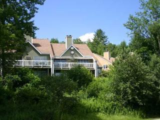 Mountainside Resort H-102 - Stowe vacation rentals