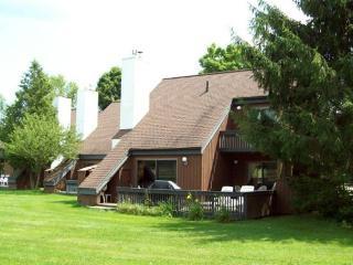 Stonybrook Condo 13 - Stowe vacation rentals