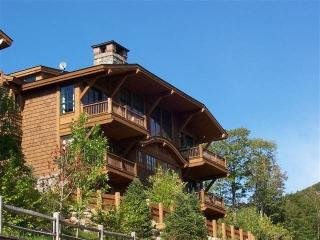 Spruce Peak Mt. Cabin 35 - Smugglers Notch vacation rentals