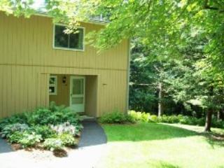 Fox Hill Condo 24 - Stowe vacation rentals