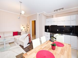 Comfortable apartment in Gdansk - Gdansk vacation rentals