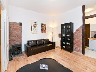Apartment in the centre of old Town - Gdansk vacation rentals