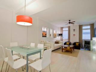 Matisse - San Sebastian - Donostia vacation rentals