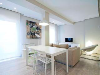 Picasso - Hondarribia vacation rentals